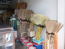 tiger grass brooms
